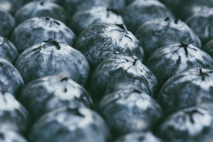 Full frame shot of rows of ripe and fresh organic blueberries in a food background with coffee space