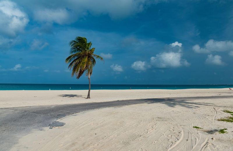 Beach Beauty In Nature Cloud - Sky Day Horizon Over Water Nature No People Outdoors Palm Tree Sand Scenics Sea Sky Tranquil Scene Tranquility Tree Water