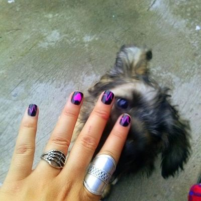 fresh manicure...someone approves
