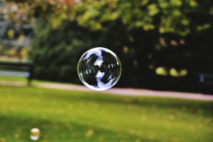 EyeEm Selects Bubbles... Bubbles...Bubbles.... Bubbles Bubbles In The Sky Spherical Sphere Fragility Bubble Wand Mid-air Outdoors Flying Close-up Refraction Spectrum Bubble Focus On Foreground No People Ball Tree