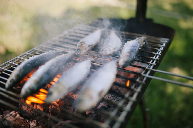 Grilled Fish Mediterranean  Mediterranean Sea Mediterranean Food Portugal Sardines Grillees Sardines On Carvon Summertime Barbecue Barbecue Grill Carvon Fish Food Food And Drink Grilled Healthy Healthy Eating Heat - Temperature No People Omega 3 Preparation  Preparing Food Sardegna Sardines Summer