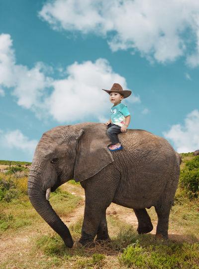 Portrait of boy riding elephant calf on field against sky