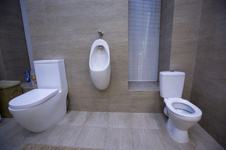 toilet urinal bidet in the house Architecture Bath Decor Home Light Modern Natural Room Sink Background Bathroom Bidet Ceramic Clean Contemporary Decoration Design Floor House Illustration Inside Interior Luxury Render Stone