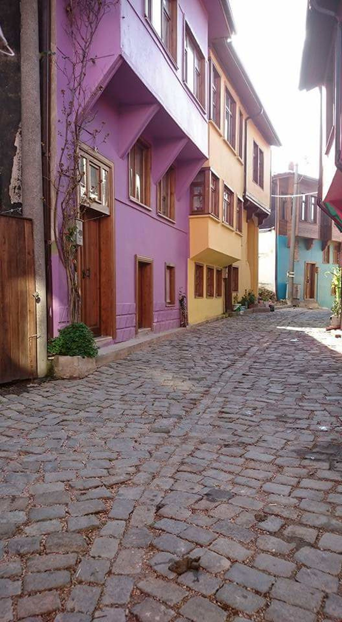 architecture, building exterior, built structure, cobblestone, house, city, multi colored, paving stone, day, in a row, the way forward, colorful, outdoors, city life, surface level, sky, footpath, no people, long