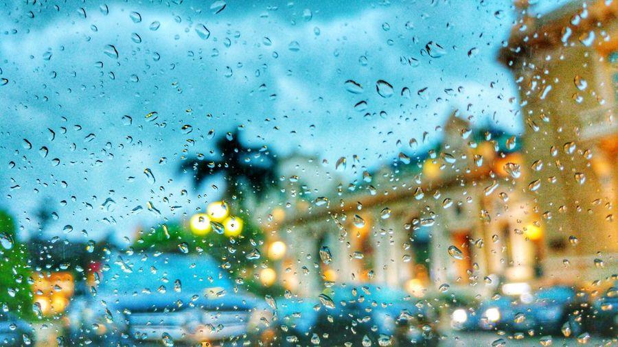 Raining Monaco