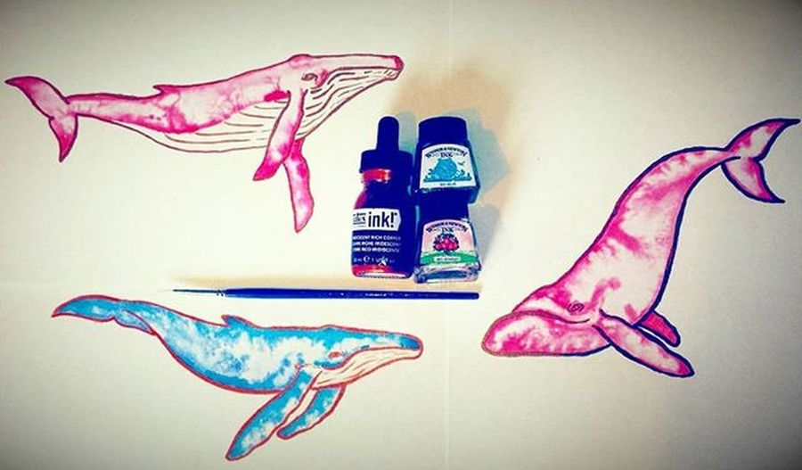 Having a whale of a time painting whales ❤💙 I Love whales 🐋🐳 Whale Whales Nature Animals Sealife Pink Blue Tiedie Arts_help Followforfollow Liquitex Art_collective Creative_animalart Fashion Epic Instart Creative Love Peace Shinebright Dreams Artofdrawingg Artspipl Fishing Featuremeinstagood featuregalaxy animalartists printstudio