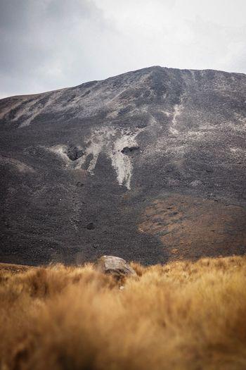 Nevado de Toluca // Sky Land Nature No People Beauty In Nature Day Cloud - Sky Field Landscape Grass Tranquility Plant Scenics - Nature