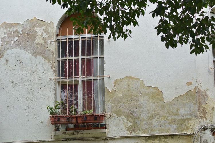 Nikon D5200 Window Abandoned Silenceofthemoment
