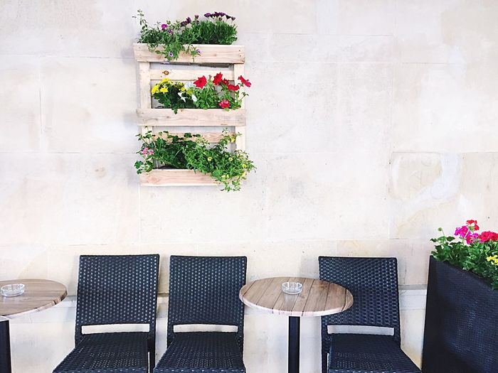 Empty Wicker Chairs By Table Against Potted Plants On Wall