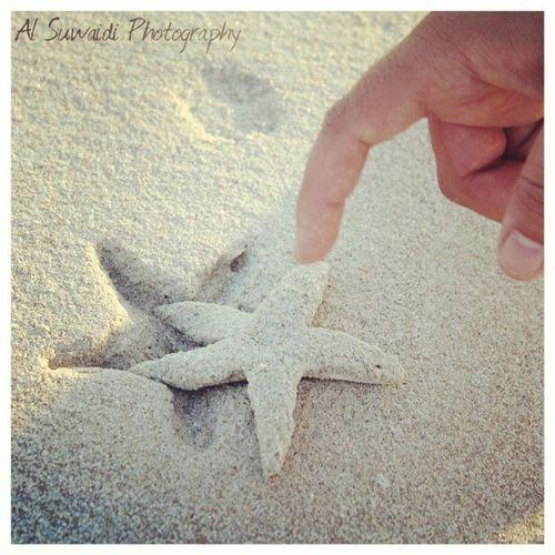 AlSuwaidiPhotography Starfish  SandStarFish Onthebeach in Sharjah ♥
