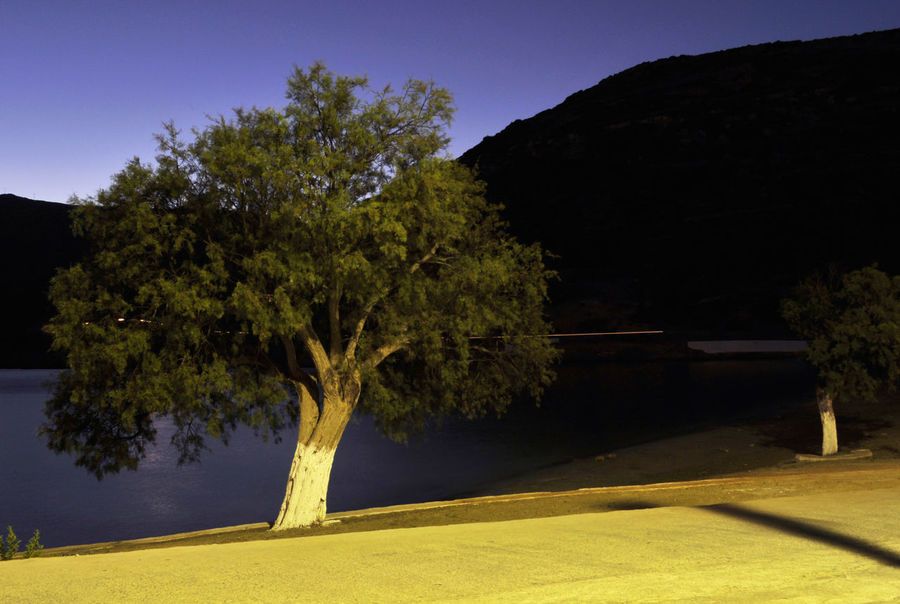 night landscape in Lipsi Island, Greece Darkness Nighttime Coast Greece Island Landscape Lipsi Night No People Outdoors Roadside Scenics Seaside Shadow Tranquil Scene Tranquility Tree