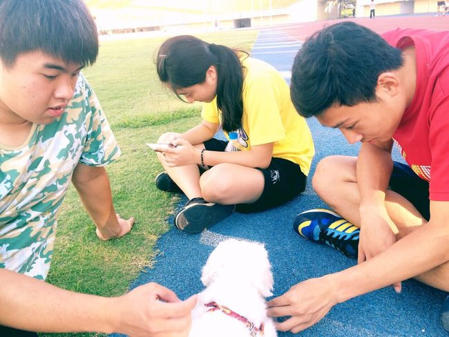 Enjoying Life Dog Friends Afternoon Good Weather