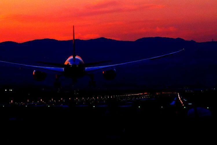 伊丹空港千里川 千里川 夕暮れ 飛行機 伊丹空港 Sky Illuminated Crowd Sunset