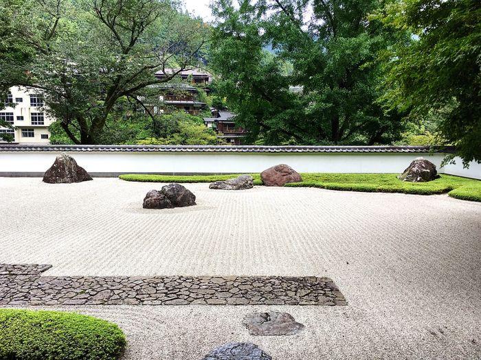 玉堂美術館 御岳 青梅 Tokyo,Japan Tokyo Built Structure Beauty In Nature Japanese Garden Travel Destinations Relaxing Relaxation Lifestyles Hello World Enjoying Life 3XSPUnity Garden
