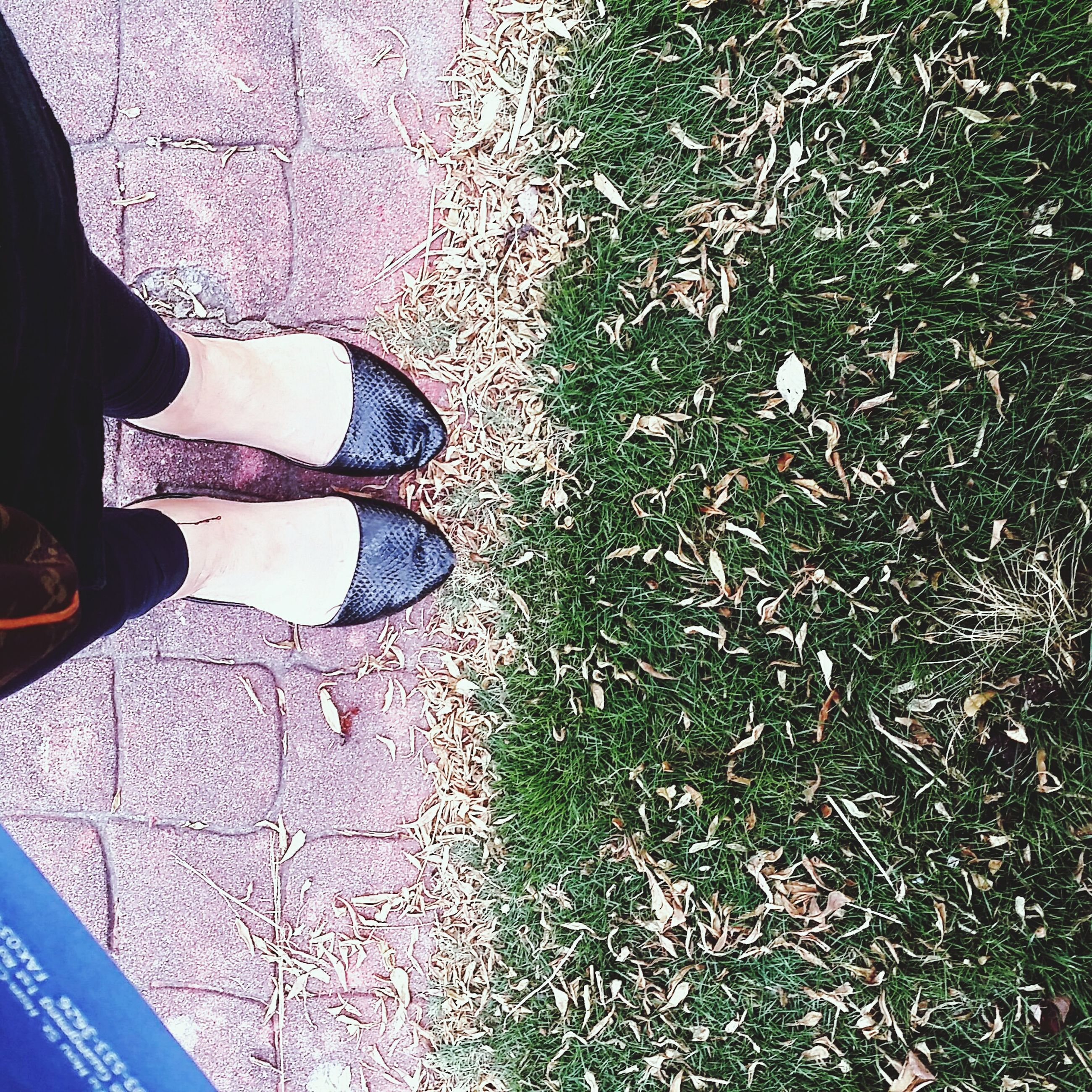 low section, person, lifestyles, shoe, standing, men, high angle view, leisure activity, personal perspective, human foot, street, unrecognizable person, footwear, part of, day, transportation