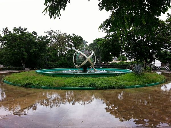 Water Tree Park - Man Made Space Outdoors Nature Day Sky No People Beauty In Nature Watermill Irrigation Equipment Font Park Avenue Parkscapes World Statues And Monuments Statues/sculptures Statues In The Park Veracruz, México Urban Urbanpark