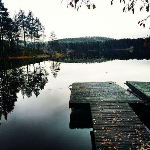 Kall morgon vid sjön. Höstbild