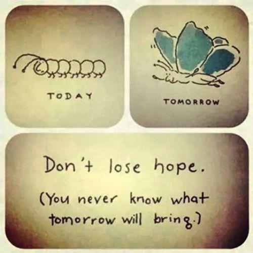 Quoye Hope Dontloose
