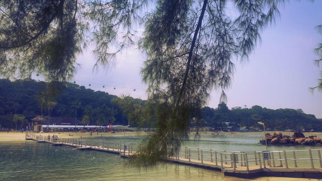 Man Vs Nature Rest And Recreation Eyemphotography Landscape_photography You Go I Go Show The Way Floating Bridge Nature Photography Enjoy The Journey