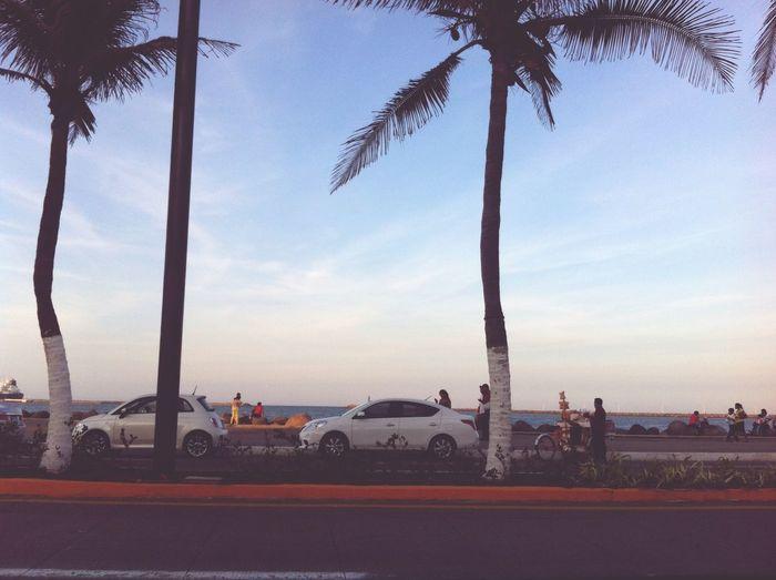 En el mar la vida es más sabrosa😼 Solo Veracruz Es Bello Playa #beach Veracruz Im In Veracruz Beach ! Turistas Turismo