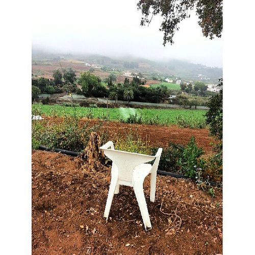 Pues sí, que no sé que me pasa con las sillas últimamente. En fin, que me voy a sentar en esta silla para que el agua de la lluvia me aclare las ideas, cogerme un constipado y de paso, contemplar este día atípico de junio. Silla Chair White Blanca Blanco WhiteChair Vista View ElPalmar Teror GranCanaria IslasCanarias CanaryIslands Canarias CanariasViva Canariasgrafías Canarios5Estrellas Igers IgersOfTheDay IgersCanarias Raining Nature Naturaleza PicOfTheDay PhotoOfTheDay FotoDelDía
