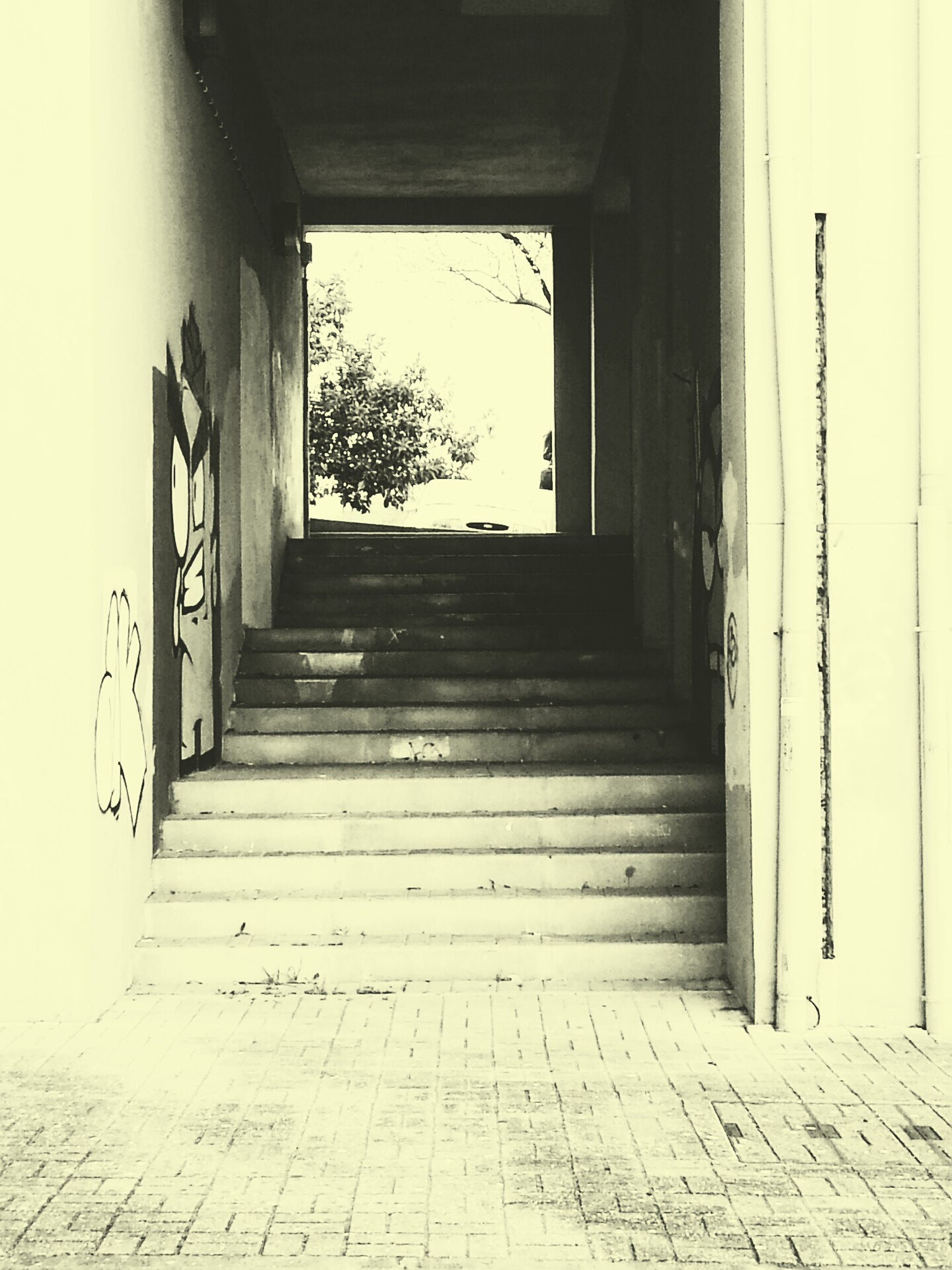 indoors, architecture, built structure, door, window, entrance, house, steps, closed, doorway, abandoned, the way forward, wall - building feature, sunlight, day, old, open, corridor, building, staircase