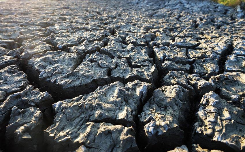 Wet Dirt Clay