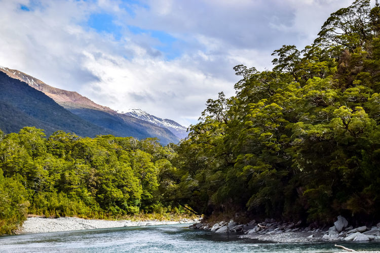 Scenic views at the blue pools. Blue Pools Walk Landscape_Collection Beauty In Nature Cloud - Sky Day Flowing Flowing Water Green Color Growth Land Mountain Nature New Zealand No People Non-urban Scene Outdoors Plant River Scenics - Nature Sky Tranquil Scene Tranquility Tree Water Waterfront