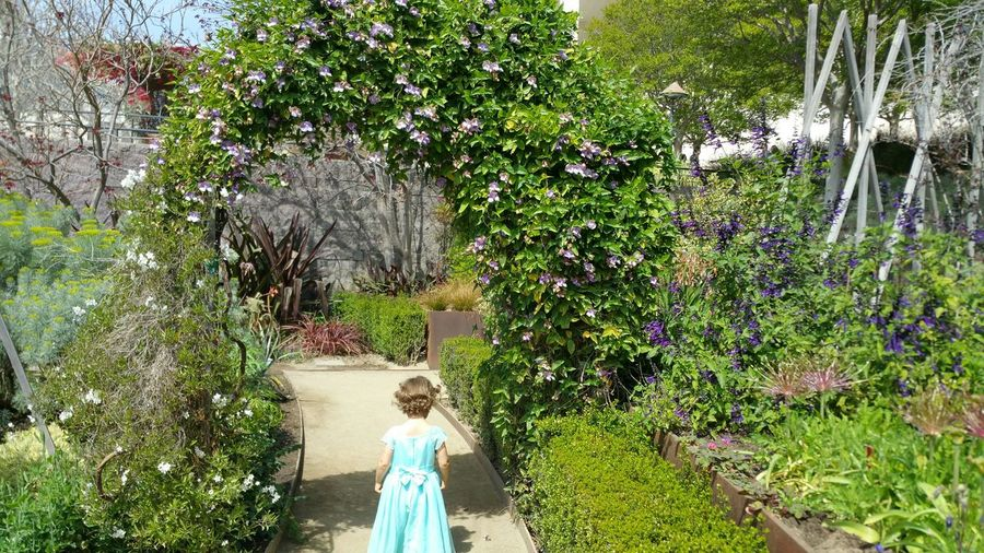 Learn & Shoot: Balancing Elements The Purist (no Edit, No Filter) Lovely Soft Pure Tranquility Serenity Peace Peaceful Child Natural Beauty Natural Innocence Enjoying Life Outdoor Photography Patterns In Nature Pattern, Texture, Shape And Form Design Interesting Perspectives Child Walked Into Picture As Clicked Easter Ready Taken At The Getty Urban Spring Fever