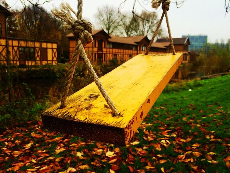 Lonely Swing Swinging Wood Wooden Swing Your Amsterdam