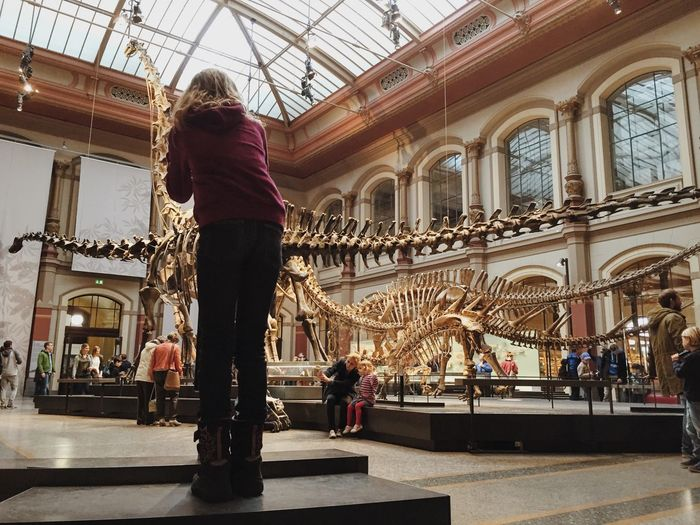 Architectural Column Architectural Feature Architecture Bones Built Structure Casual Clothing Child Childhood City Life Day Dinosaur Dinosaurs Leisure Activity Lifestyles Medium Group Of People Mixed Age Range Museum Museum Of Natural History Natural History Museum Naturkundemuseum Naturkundemuseum Berlin  Skeleton Sky Tourism Tourist