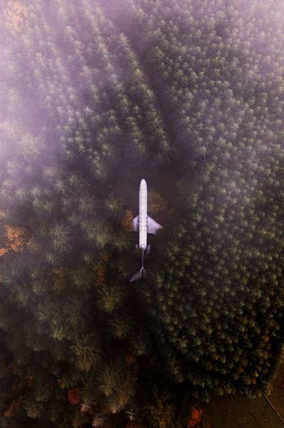 Airplane home outside of Portland, OR. IG @noeldxng Fog Dji Plane Fall Fall Beauty Aerial View Drone  Forest Orange Oregon Home Abandoned Vista View View From Above America PNW Portland Trees Galaxy Worn Out Obsolete Woods WoodLand Aircraft Wing Aeroplane