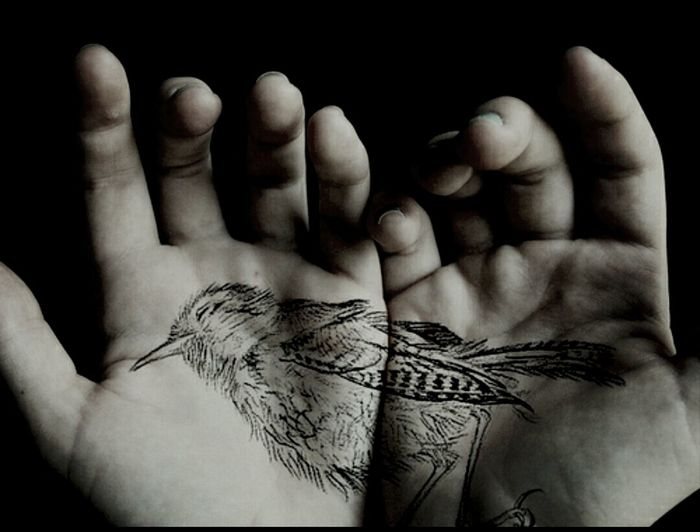 Bird in my Hands. Nice Tattoo