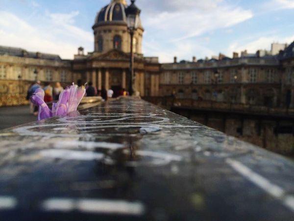 <3 Paris Paris ❤ Bridge Love Check This Out Hello World Enjoying Life Sunset Europe France