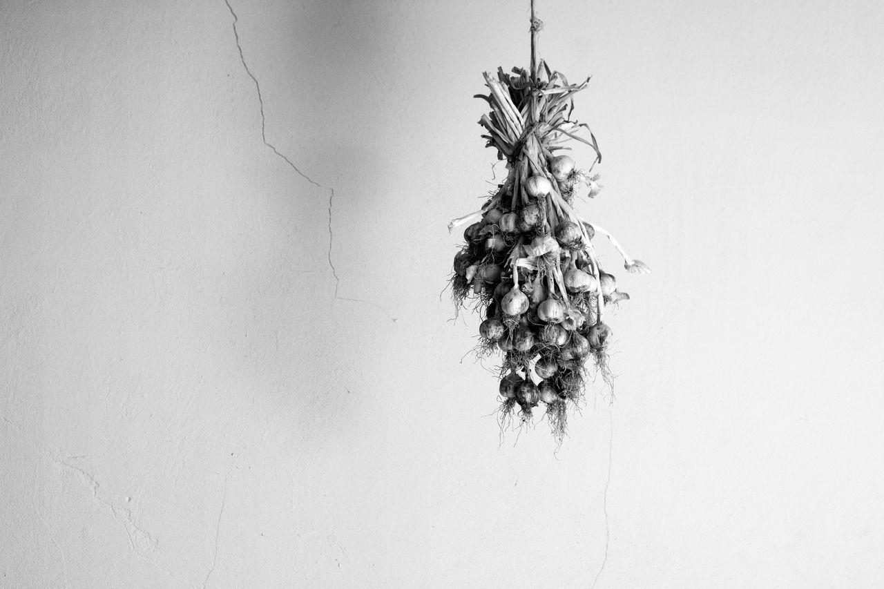 no people, studio shot, hanging, white background, indoors, christmas decoration, close-up, day