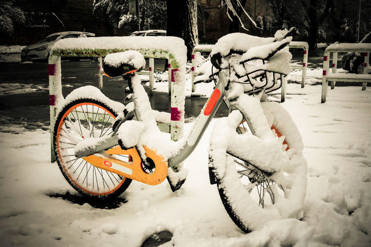 Bicycle Cold