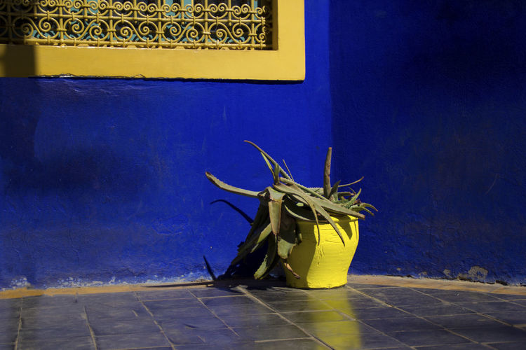 The Minimalist - 2019 EyeEm Awards Marrakech Morroco Architecture Colors Travel Traveling EyeEm Best Shots EyeEm Best Edits Yellow No People Flooring Blue Wall - Building Feature Built Structure Wall Creativity