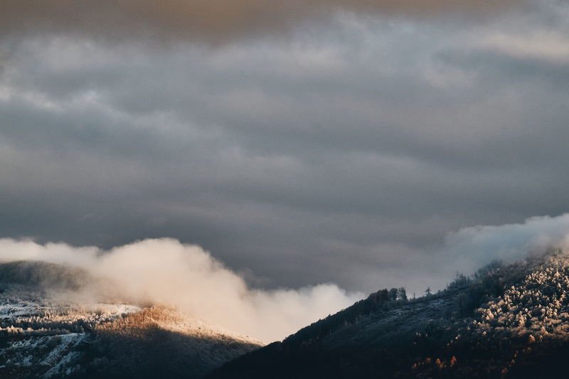 Transition Close-up Landscape Forest Winter Snow Clouds Mountain No People Nature Outdoors Day Beauty In Nature Sky Tree Power In Nature