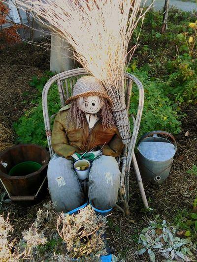 Scarecrow Coffeeaddict