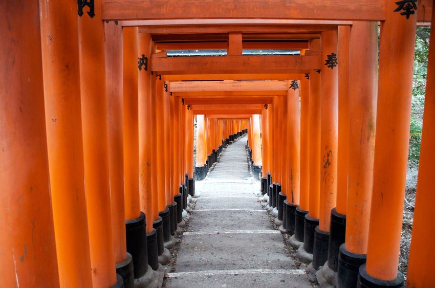Walking the vermillion shrines of Fushimi Inari-taisha in Kyoto, Japan. Pathway Staircase Architecture Orange Color Place Of Worship Spirituality Shrine Architectural Column Kyoto Japan Travel Destinations Vermillion Reverence Blessings Dedication In A Row Ancient Architecture Tourism In Awe Footpath