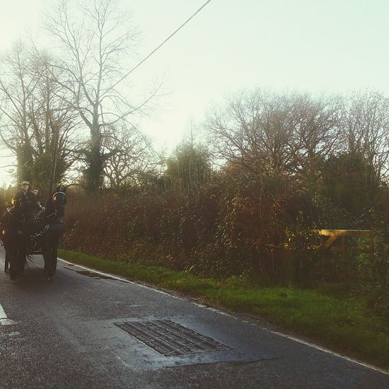 Horse And Cart Horse Riding On The Road Riding On The Road Horse On The Road