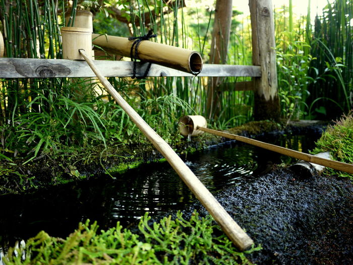 Bamboo Water Pipe Bamboo Water Scoops Green Color Japan Japanese Garden No People Relaxation Travel Destinations Water Reflections