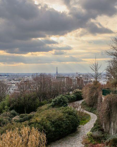 Belleville Parc De Belleville Landscape Urban Paris Canon 5d Mark Lll Pancake