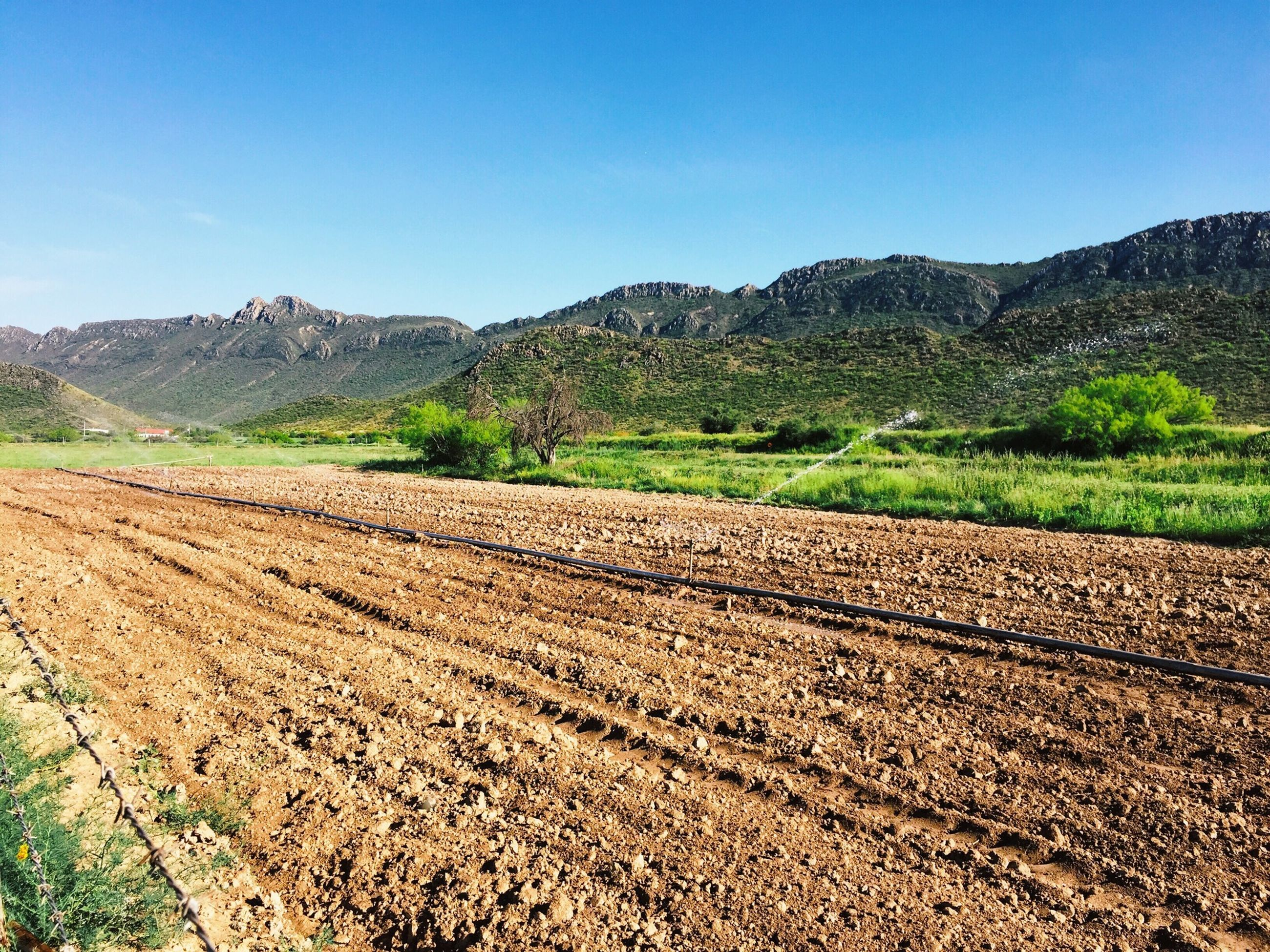 mountain, clear sky, landscape, tranquil scene, tranquility, scenics, blue, mountain range, beauty in nature, nature, non-urban scene, copy space, remote, field, road, countryside, desert, day, tree, sunlight
