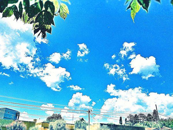 Sky Background Skyblue Sky Blue And Clouds Cielo Azul Y Nubes Nubesdehoy Nubes Cielos Y Mares