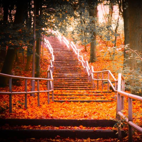 Staircase in forest during autumn