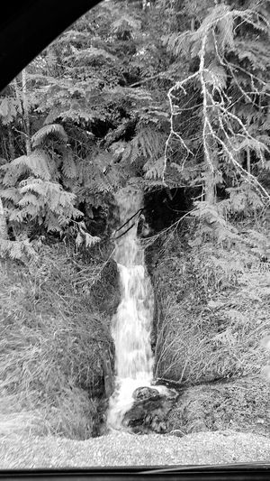 Waterfall Glacier National Park Montana. Black and white By Familycountrysteele Photography