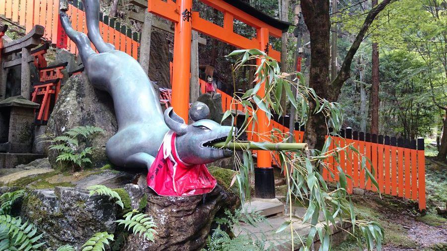 Statue Sculpture Building Exterior Outdoors No People Creativity Art And Craft Culture Fox Shrine Of Japan Shrine